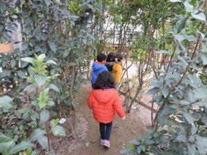 els nens passen pel laberint