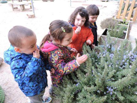 els nens oloren les plantes