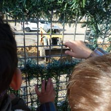 Dos infants miren per la reixa del pati una excavadora
