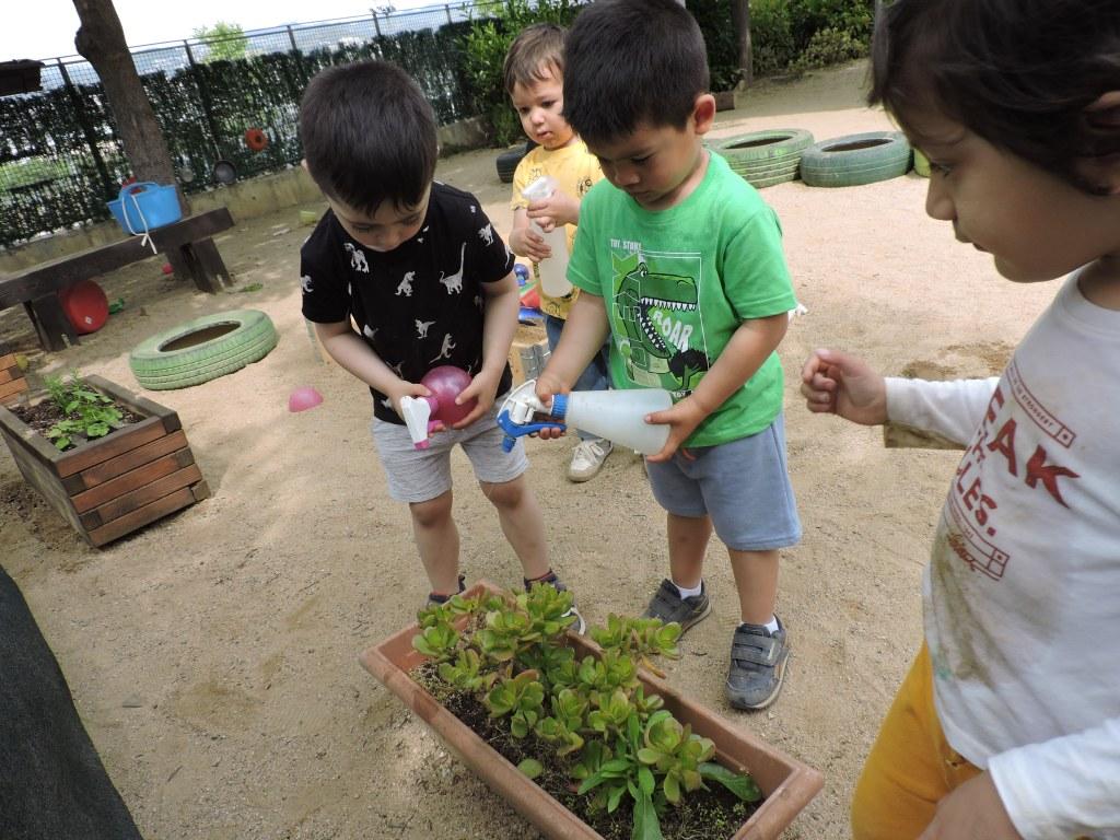 Els infants estan regant les plantes